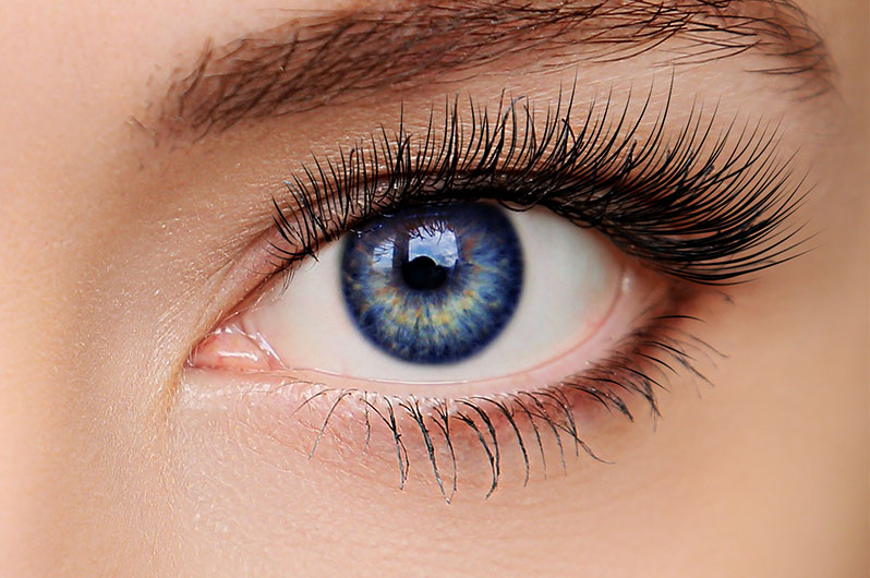 Red Union Salon Eyelash Tinting Services